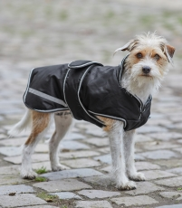 Hundedecke Protection